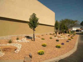 Commercial landscaping by Rising Sun Landscaping & Maintenance