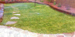 Landscaping and sod installation by Rising Sun Landscaping & Maintenance