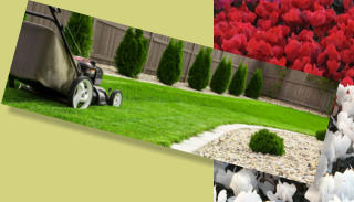 Make sure to keep your lawn well mowed and trimmed for landscaping home staging.