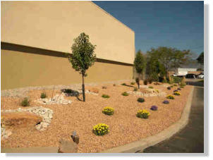 Commercial landscaping is important to attract and please customers.