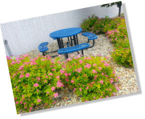 Businesses should consider a well maintained and functional break area with plants, tables, and shade to increase employee morale.
