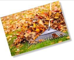 For landscape home staging, make sure to keep the yard tidy, such as keeping leaves raked.